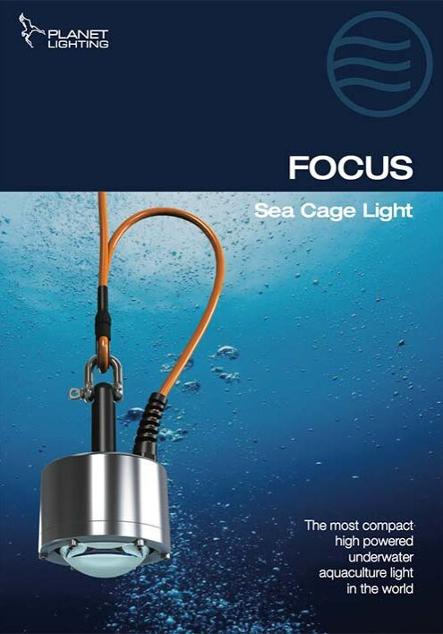 Focus brochure cover image