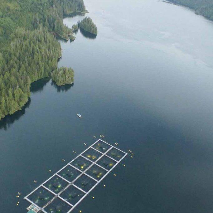 aerial Tofino BC Salmon farm lighting