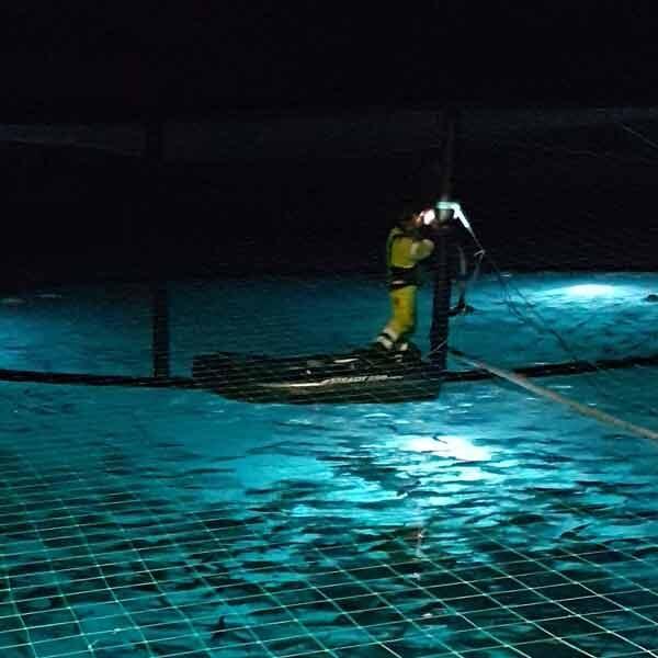 aquaculture-night-support2